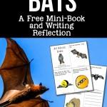 Bats: A FREE Mini-Book and Writing Reflection