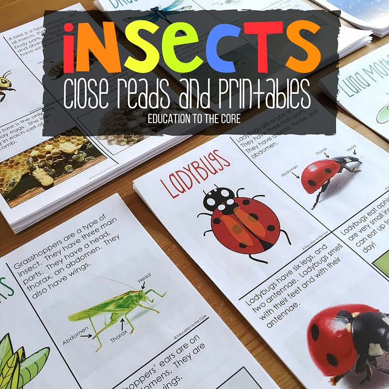 Insects Close Reads and Printables