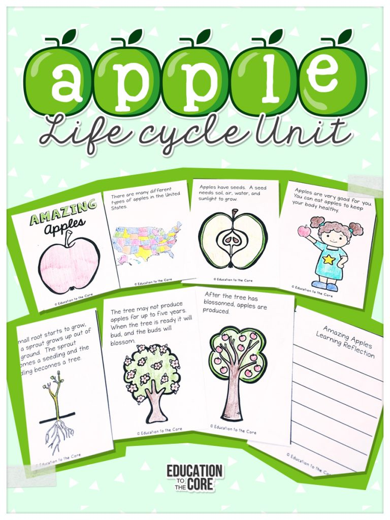 Printables and close reads for learning about the life cycle of an apple! Wonderful math and literacy activities for kindergarten and first grade students!