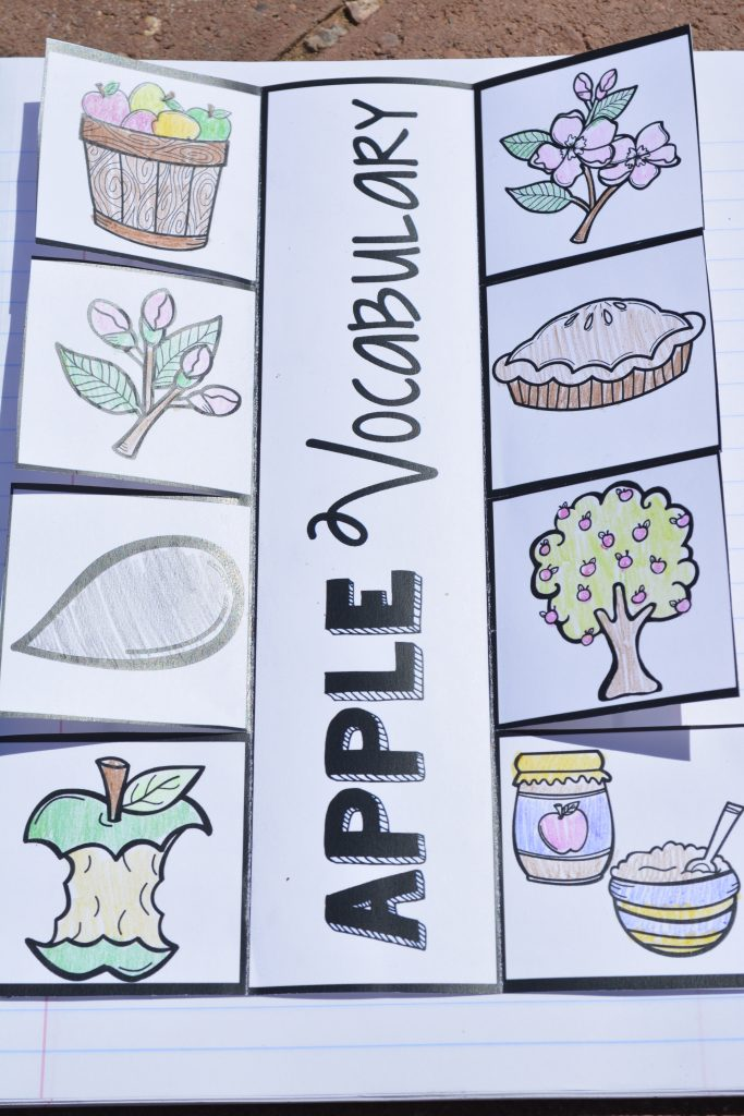 "Interactive Apple Life Cycle Notebook Pages: I just had to save the best for last! My favorite part! Interactive Journal Pages! My kids were beyond excited and so engaged in this activity. I have one for the apple life cycle, one for a ""recipe"" and one for apple vocabulary."