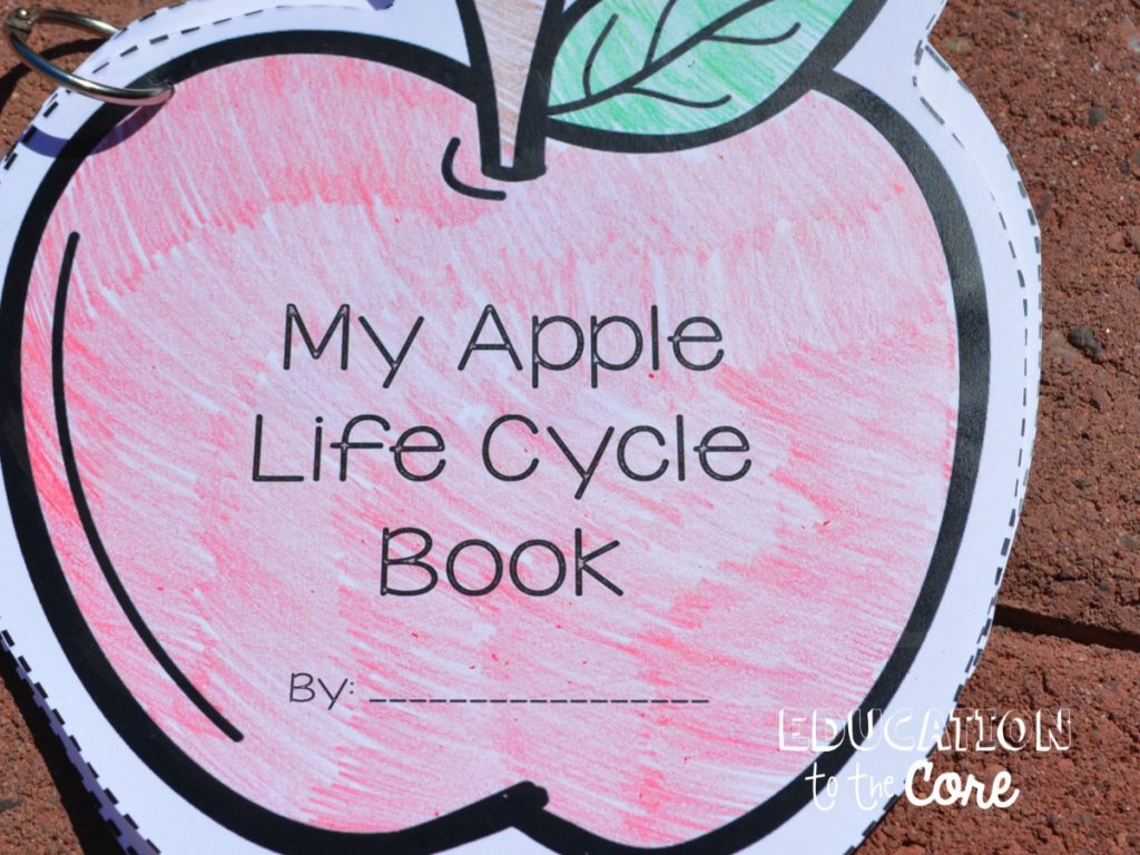 Apple Life Cycle Book: We made an Apple Life Cycle Book where we had to identify the different stages. At the end, I just punched a hole, and put a ring around the pages so the kids can easily flip through the stages of the Apple Life Cycle.