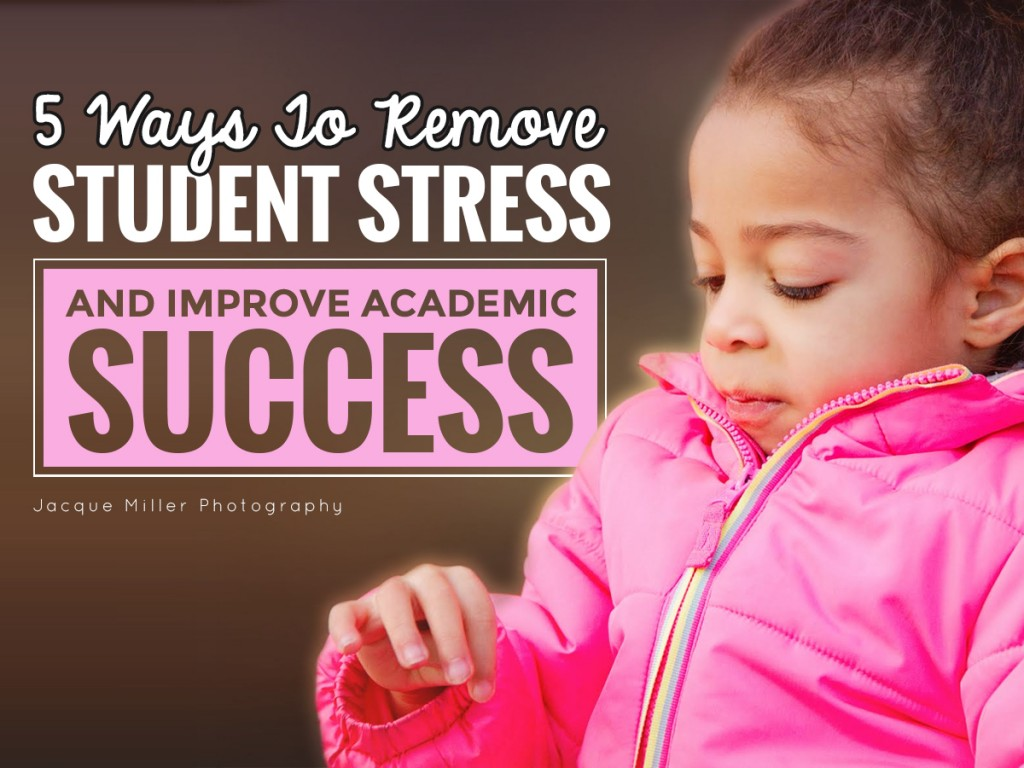 5 Ways to Remove Student Stress and Improve Academic Success