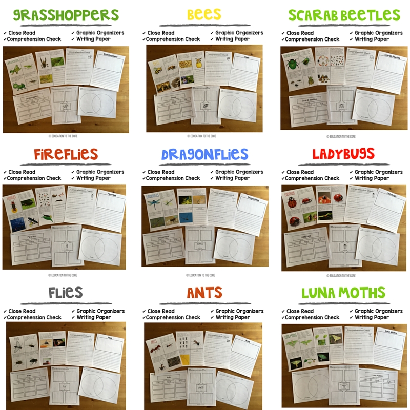 9 Insects Close Reads with Comprehension Passages