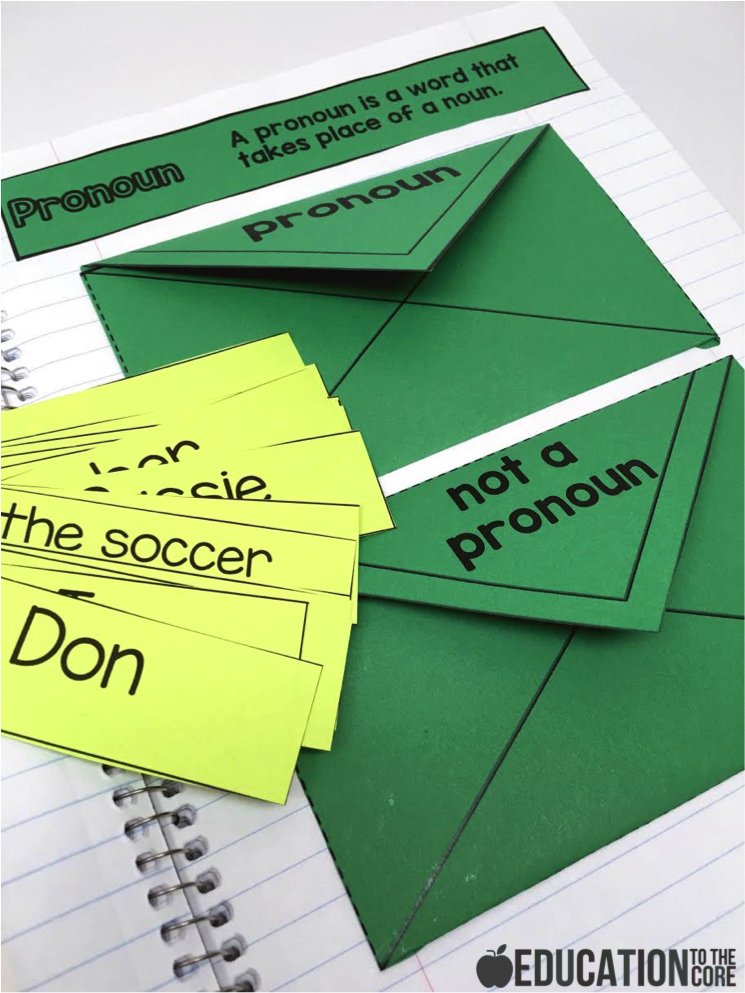 Pronoun Interactive Notebooks