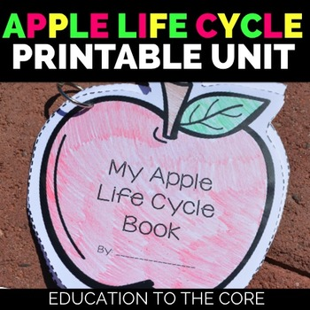 photograph relating to Apple Life Cycle Printable referred to as Apples Lifetime Cycle
