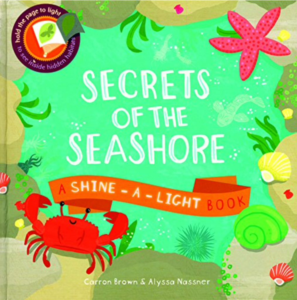 image of Shine a Light book; Title is Secrets of the Seashore